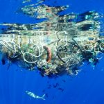 dechets-plastique-mer